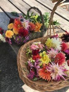 manden gevuld met geplukte bloemen