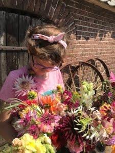 geplukte bloemen