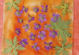 bloem en blad